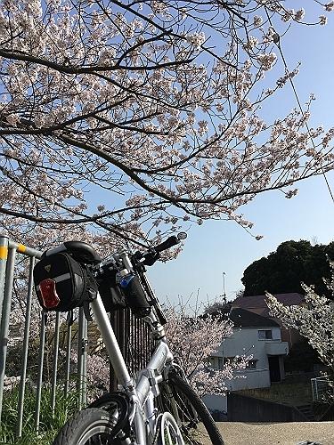 2018-03-31_15-44-18_774-s.jpg