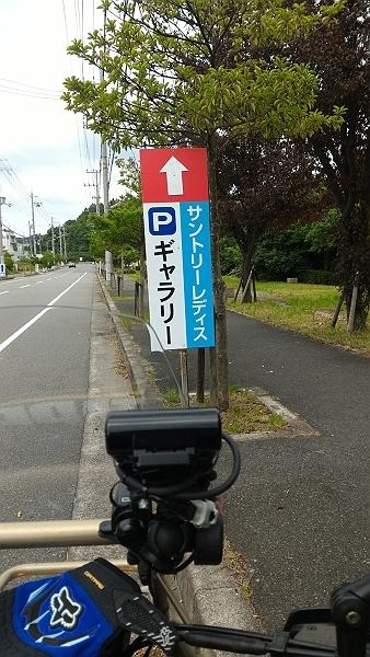 P_20160611_092141-s.jpg